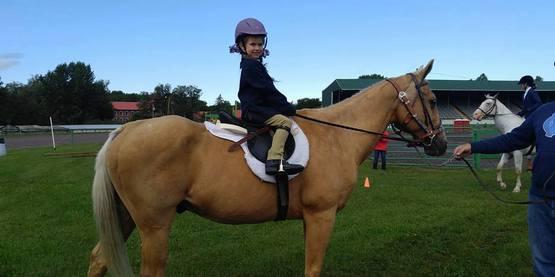 Horse fair 2
