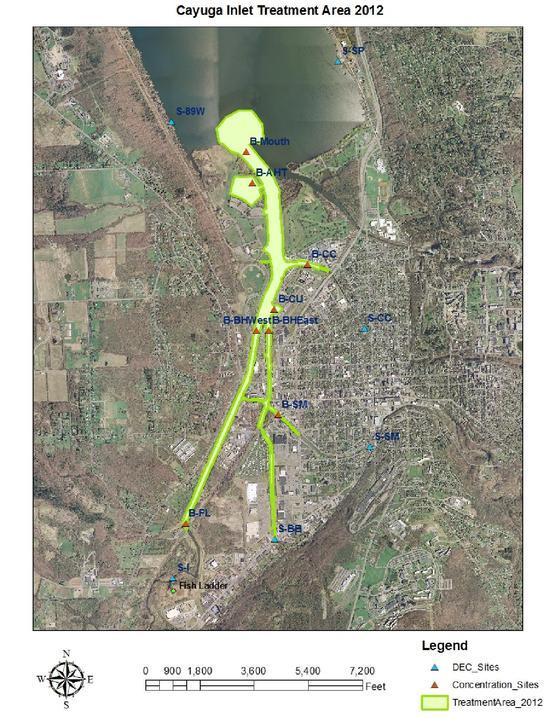 2012 Endothall Monitoring Cayuga Inlet - Hydrilla Treatment