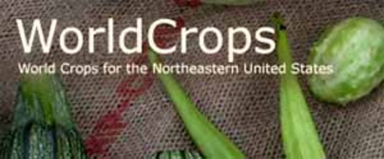 Image from the website of WorldCrops.org to provide visual for the sidebar link