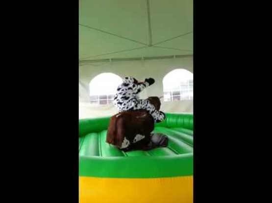 Cow Riding Bull Video @ NYS Fair 2015