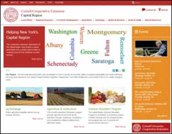screenshot of Capital Region website