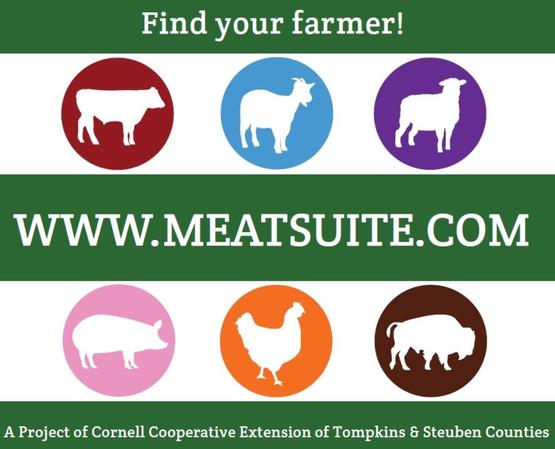 Meatsuite.com