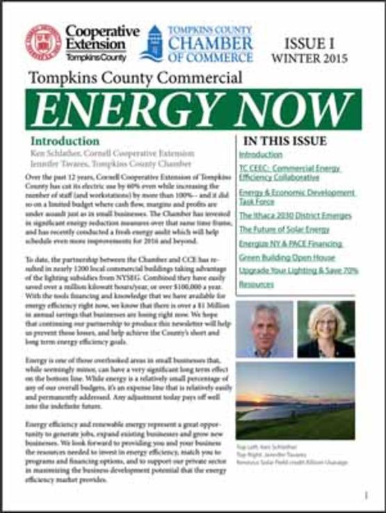 Commercial Energy Now Winter 2015 newsletter