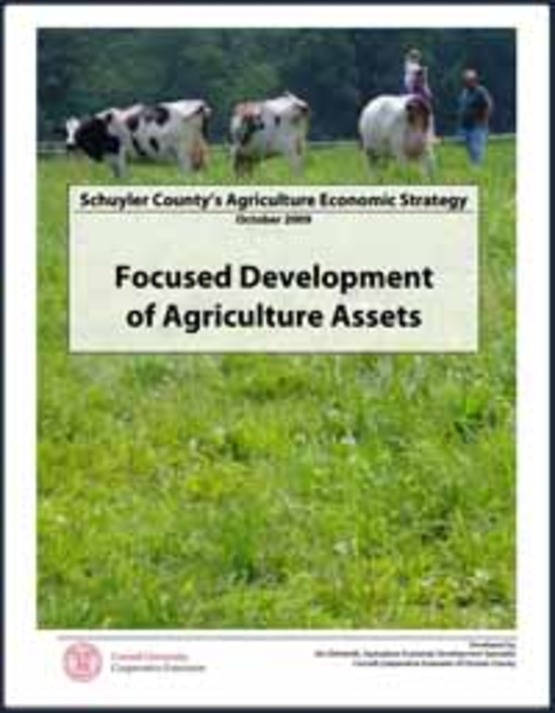 """Cover image of the """"Schuyler County's Agriculture Economic Strategy  Focused Development of Agriculture Assets"""" (Oct 2009) to use to link to it in the sidebar (200 ppx wide)"""