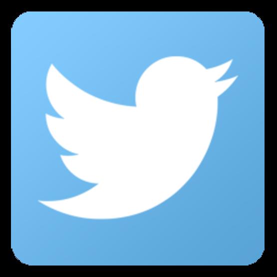 twitter logo, social media