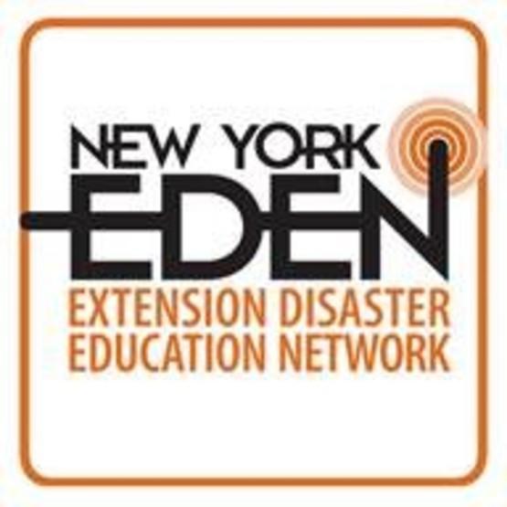 EDEN COVID-19 Information Link