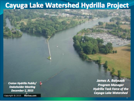 Cayuga Lake Watershed Project Presentation