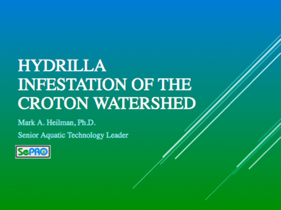 Presentation of Hydrilla Infestation in the Croton Watershed