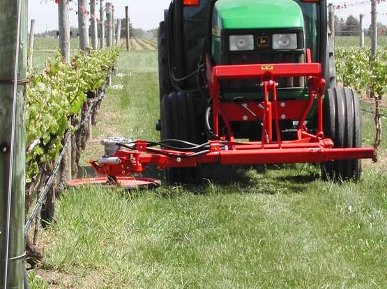 cornell cooperative extension innovative under vine management in