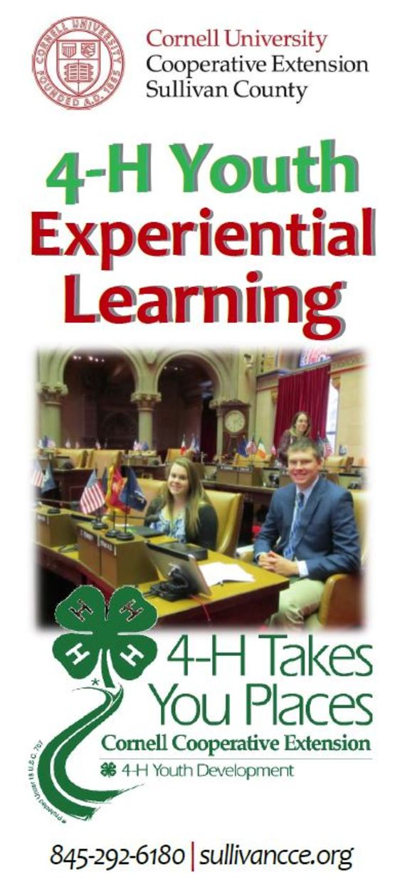 4-H Experiential Learning Brochure