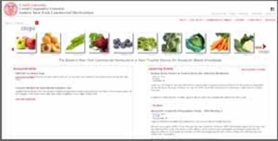 screenshot of the ENY Commercial Horticulture website