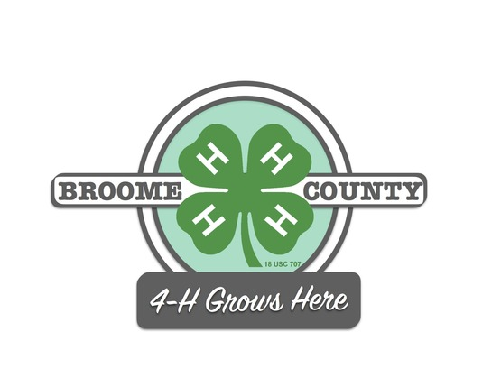2016 Broome County 4-H T-Shirt Design