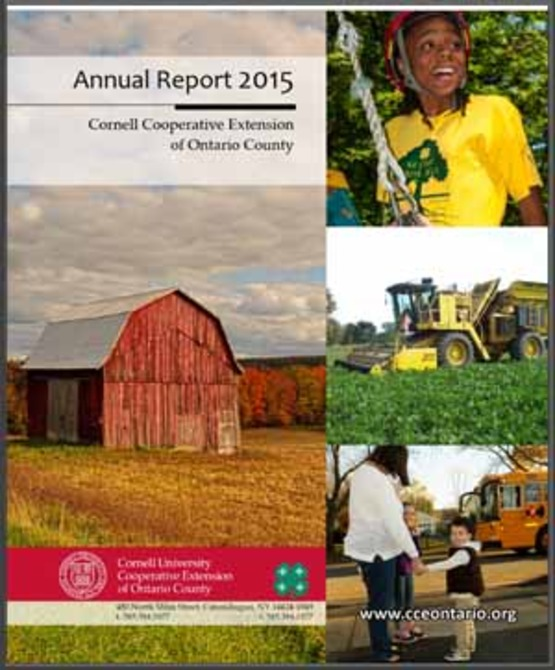 sidebar image for 2015 annual report cover