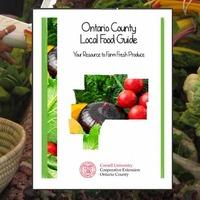 food-guide-spotlight-850x425.jpg