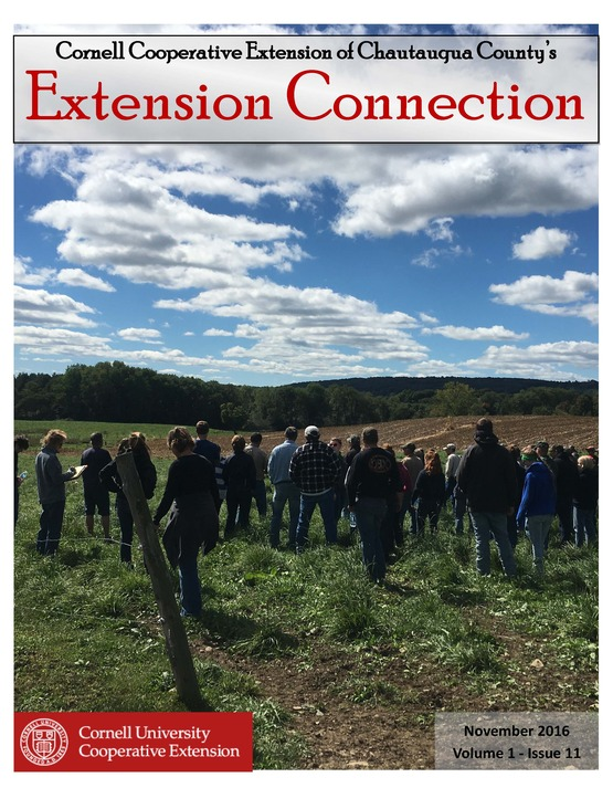 Extension Connection November 2016