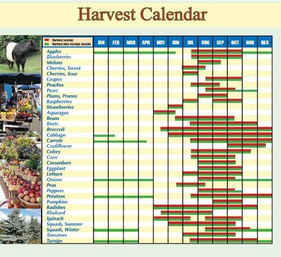 harvest calendar