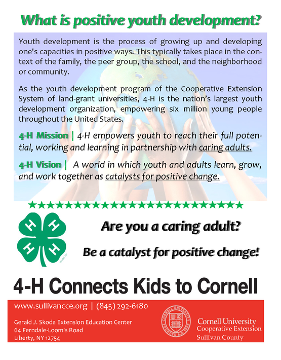 4-H Volunteer Card CCE Sullivan English