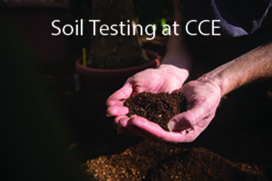 Soil Testing at CCE