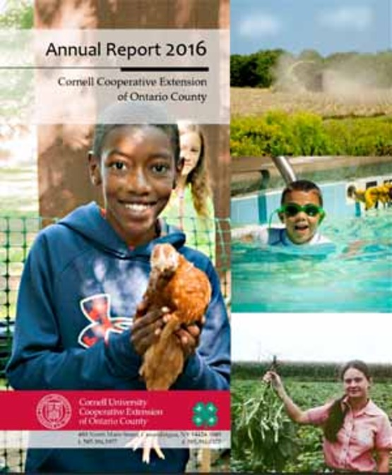 Cover shot of 2016 Annual Report, 300px wide for use in sidebar
