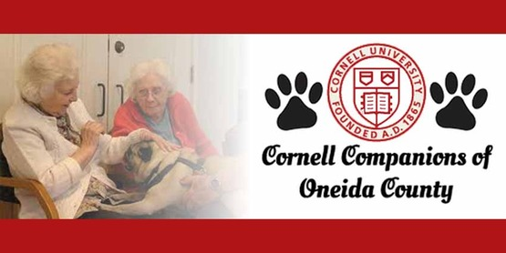 banner for Oneida Cornell Companions page