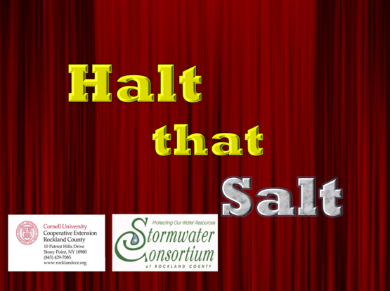 Halt the Salt PSA video