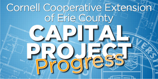 Capital Project Progress