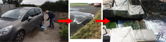 Washing your car on the road lets the sap run off into local waterways