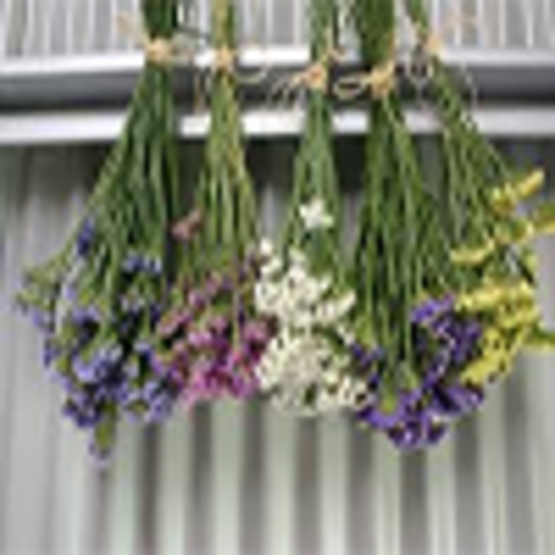 Drying Flowers - a variety of methods