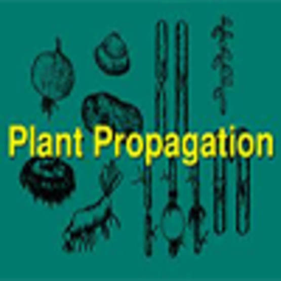 Plant Propagation by Leaf, Cane, and Root Cuttings