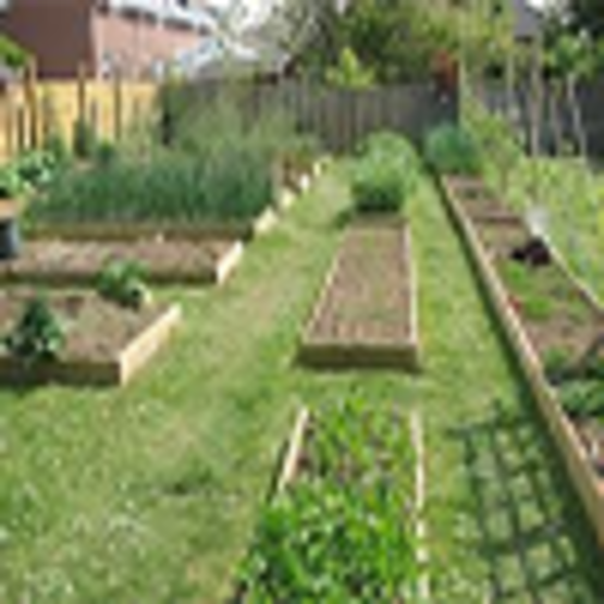 Advantages of Raised Bed Gardens