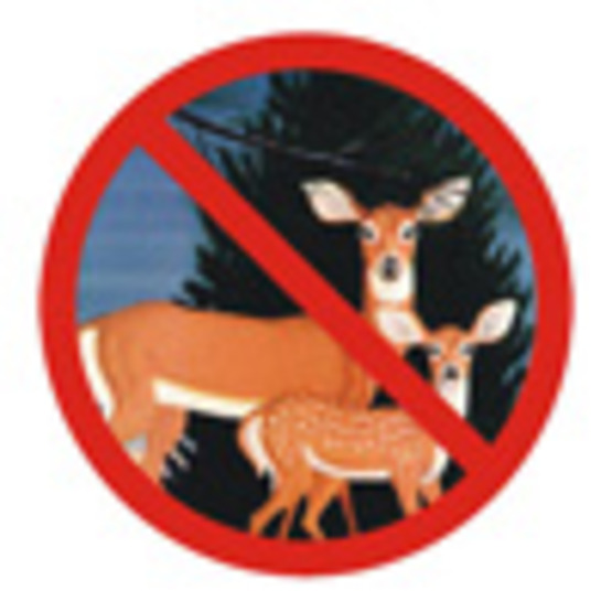 Deer-Choosing Deer-Resistant Plants