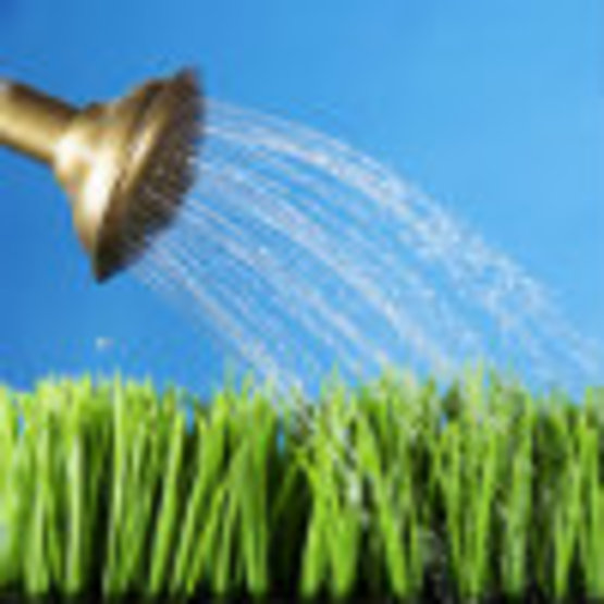 Lawn Care and Water Quality Almanac