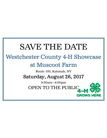 Save the date showcase 2017