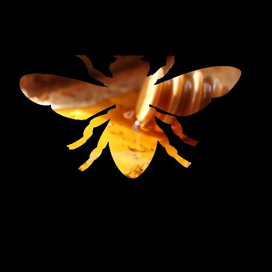 CCESC Catskills Kitchen Branding Icon Honey
