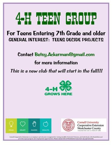 Teen group flyer 2017