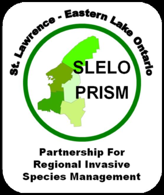 SLELO PRISM logo
