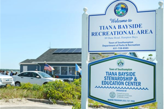 Tiana Bayside sign