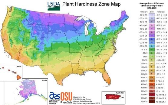 Plant Hardiness Map Icon