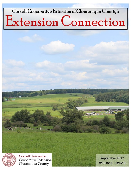 September Extension Connection