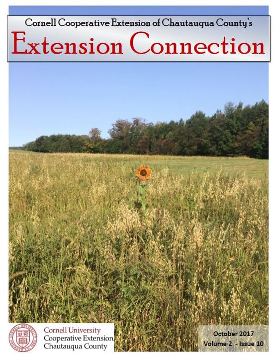 September 2017 Extension Connection