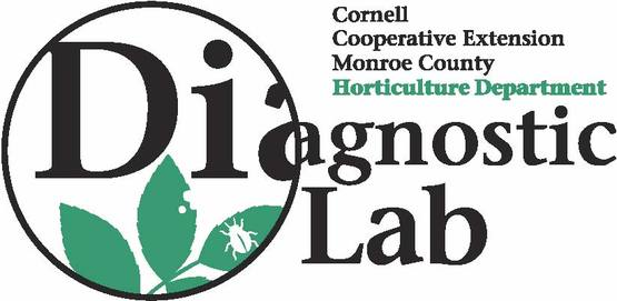 Monroe County Diagnostic Lab Logo