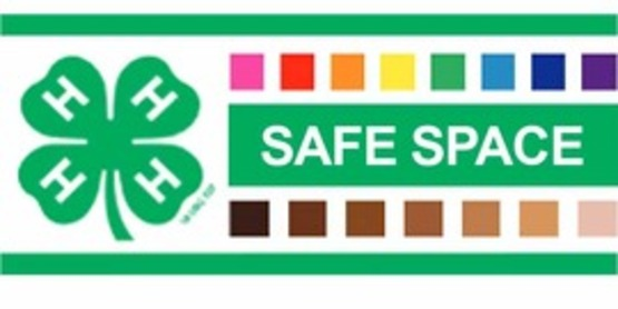 4-H Safe Space