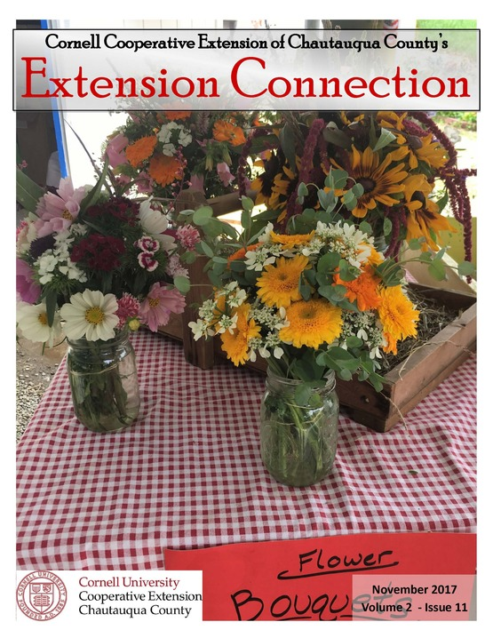 Extension Connection,November,2017