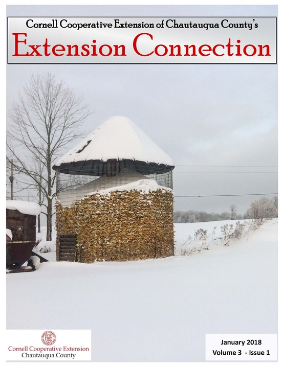 Extension Connection,January, 2018