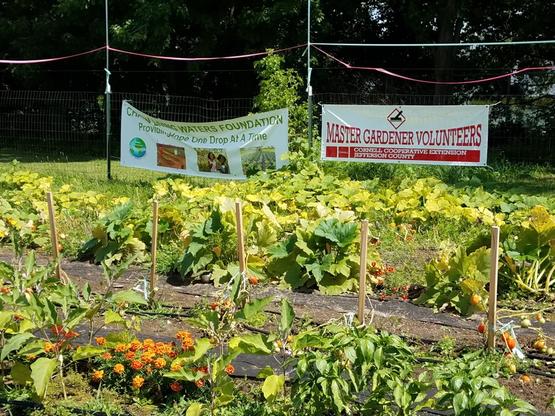 Watertown Urban Mission Community Garden