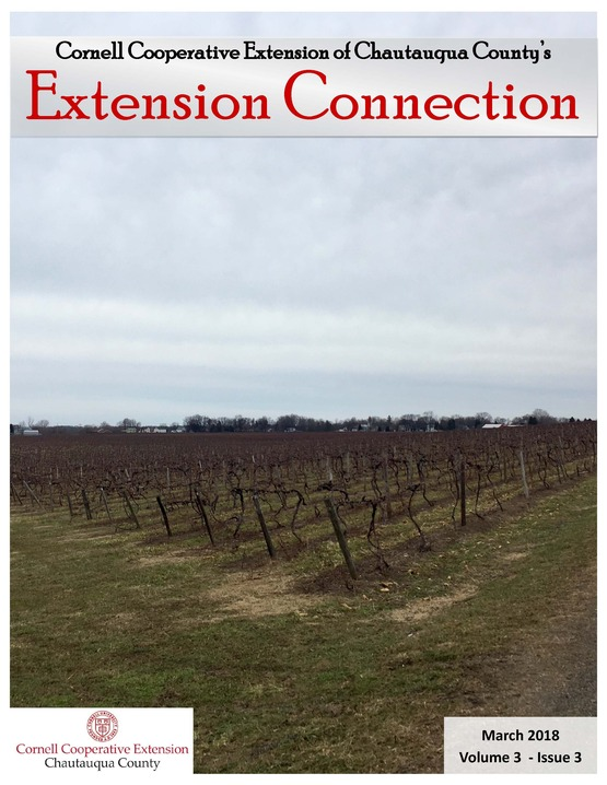 Extension Connection, March, 2018