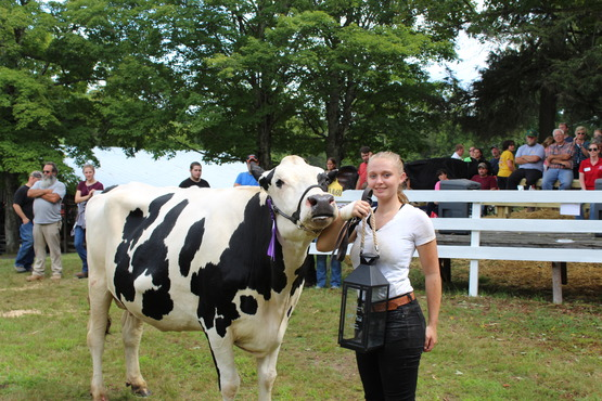 4-H member Sullivan County Youth Fair dairy show 2017