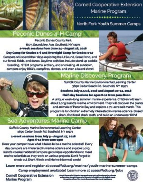 North Fork Marine Camp Flyer