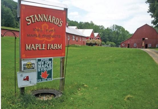 Stannards Maple Farm