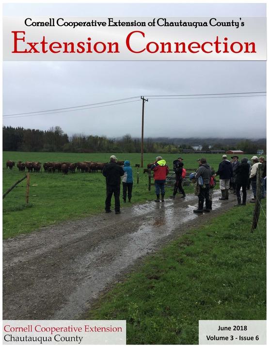 June Extension Connection